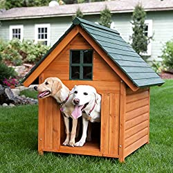 Extra Large Outdoor Dog House Dog Kennel 40w X 44d X 47h Solid Wood for Natural Insulation Comfortable and Secure Large T-bone A-frame