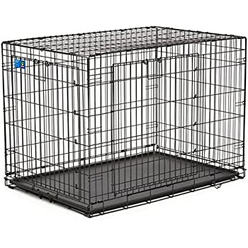 Amazon Top Paw Double Door Wire Dog Crate Size 42l X 28w X