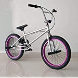 SWORDlimit Bicicleta BMX Freestyle para Ciclistas Principiantes y avanzados, Cuadro de Acero con Alto Contenido de Carbono, Engranaje BMX 25x9T, Frenos Traseros en Forma de U y Ruedas de 20 Pulgadas