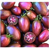 超甘い 紫トマト 種 4粒