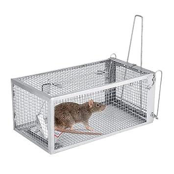 NANANA Trampa Ardilla Listada para Ratones, Ratones, Animales Y ...