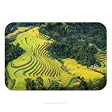 Flannel Microfiber Non-slip Rubber Backing Soft Absorbent Doormat Mat Rug Carpet Rice Fields On Terraced Of Hoang Su Phi Country Ha Giang Province North Vietnam 461873641 for Indoor/Outdoor/Bathroom/K