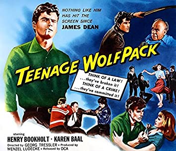 Image result for teenage wolfpack movie poster