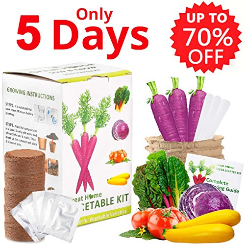 Vegetable Herb Garden Growing Seed Starter Kit Indoor Outdoor Easily Grow 5 Fresh Organic Veggie Garden kit Gift Set for Women Kids Adult with Tomatoes, Purple Carrot, Rainbow Chard, Brussels Sprouts (Plant Kit Tomato)