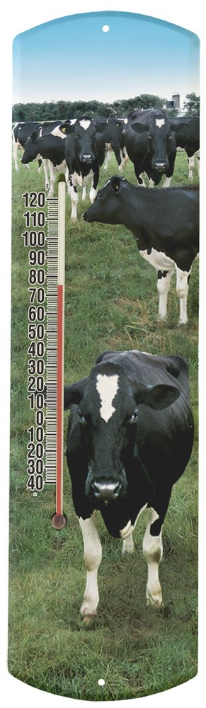 Heritage America by MORCO 375COW Cow Outdoor or Indoor Thermometer, 20-Inch