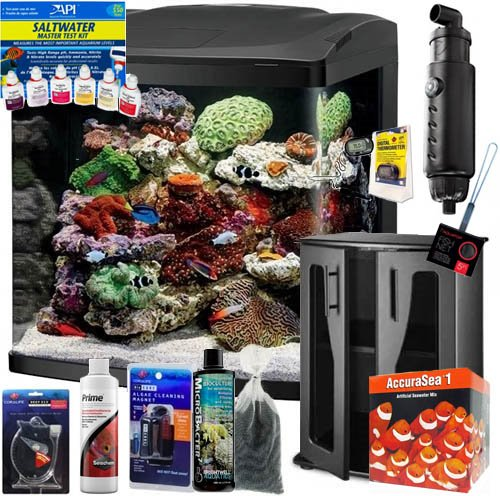 (BioCube Coralife Size 32 LED Aquarium Complete Saltwater Fish ONLY Bundle)