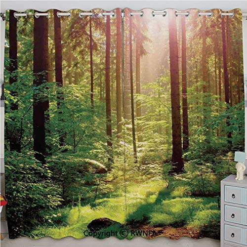 Homenon Forest Spring Time Sunset Moss Woods Leaf Wilderness Fantasy Magical View Printed Curtain Set of 2 Panels(100