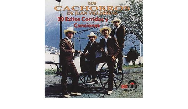 Mi Novia Yolanda by Los Cachorros de Juan Villareal on Amazon Music - Amazon.com