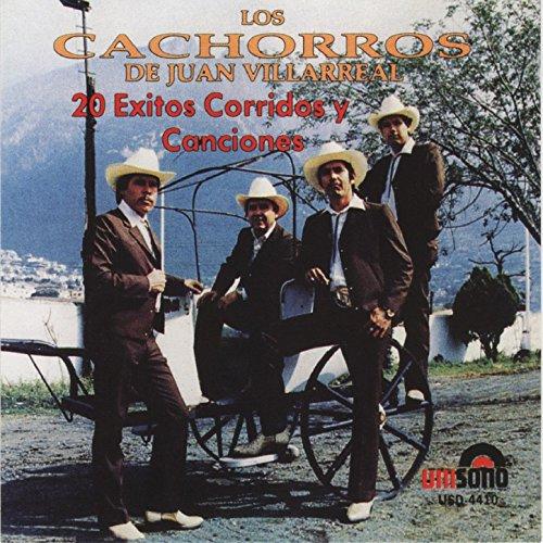 20 Exitos Corridos y Canciones