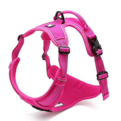 Chai's-Choice-Best-Outdoor-Adventure-Small-Dog-Harness