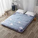 WCCT Tatami mattress mattress,Bed mattres,Thicker cartoon folding mats-A 120x200cm(47x79inch)