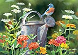 Lang Watering Flowers Petite Note Cards by Susan Bourdet, 3.5 x 5 inches, 12 Cards and 13 Envelopes (2080036)