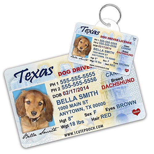 Texas Driver License Custom Dog Tag for Pets and Wallet Card - Personalized Pet ID Tags - Dog Tags For Dogs - Dog ID Tag - Personalized Dog ID Tags -
