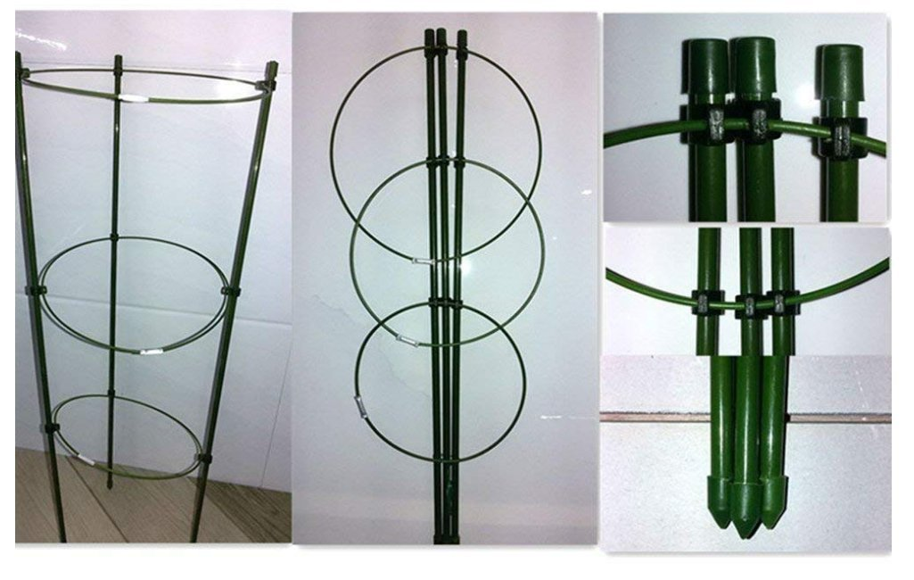 Garden Plant Support Garden Trellis Flower Iron Support Ring Climbing Plant Grow Cage Green, Set of 3 (3pack-24'')