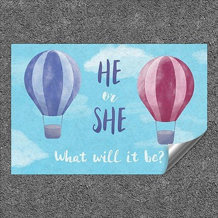CGSignLab 5-Pack Inner CircleGender Reveal -Whale -Square Heavy-Duty Industrial Self-Adhesive Aluminum Wall Decal | 24x24