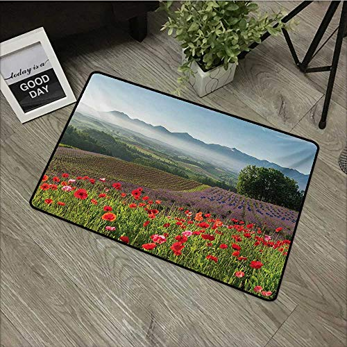 Flowers Doormat Entrance Mat Flower,Poppy Flower Lavender Farm Foggy Morning Agriculture Outdoor Crops Red Purple Art,Multicolor,For Patio, Front Door, All Weather Exterior Doors,31