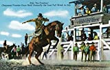 Cheyenne, WY - Cheyenne Frontier Days Festival; Rodeo Scene of Cowboy on Bucking Horse (16x24 Collectible Giclee Gallery Print, Wall Decor Travel Poster)
