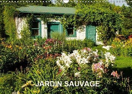 Amazon.com : JARDIN SAUVAGE 2019: 13 photos d\'un jardin naturel et ...