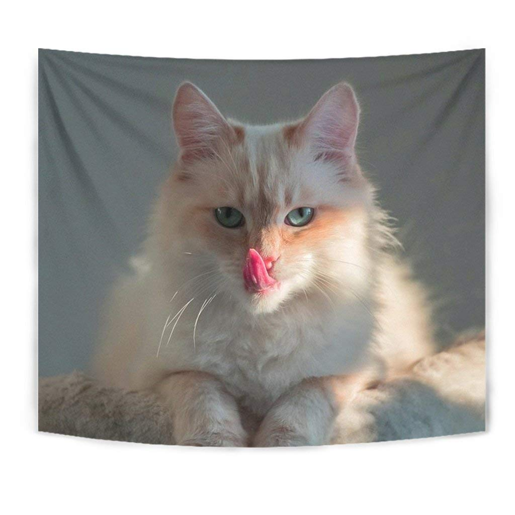 Cute Birman Cat Print Tapestry by Breedink