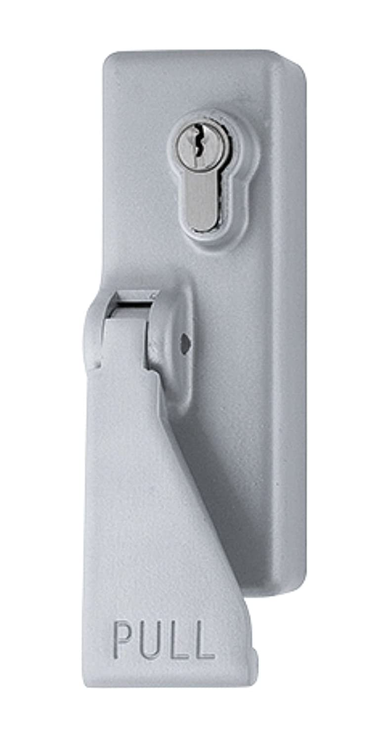SILVER Hoppe AR885 Fire Exit Pad Handle - Outside Access Device with Pad +2 Keys Arrone by Hoppe