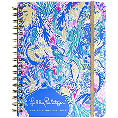 lilly-pulitzer-large-17-month-monthly