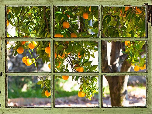 Window View Wall Mural Orange Trees in the Yard Vintage Style Wall Decor Peel and Stick Adhesive Vinyl Material