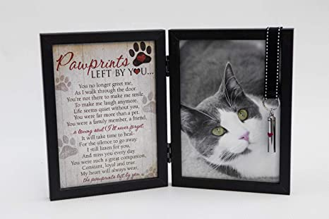 Paws-Itively* Perfect Cat Wood With Leather Trim* Picture Frame* 9T X 7W