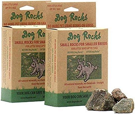 Bolso Preventivo de Parche de Orina Dog Rocks 100g