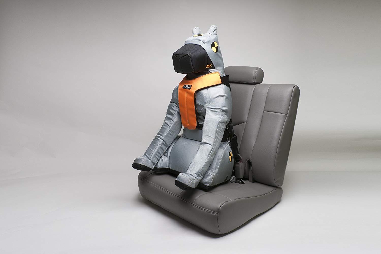 Sleepypod Click-It Sports Safety Harness, Jet Black, Small 16.5'' - 22''