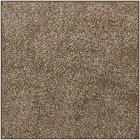 Koeckritz 10 x10 Square Chocolate Chip Area Rug Carpet with Multiple Sizes and Shapes Available