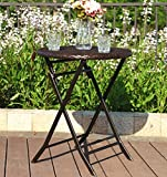PHI VILLA Patio Rattan Folding Furniture Outdoor Chair and Table Set Perfect for Porch, Backyard, Porch (1 Table)