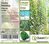 QueenBird Trellis Netting - Heavy Duty Garden