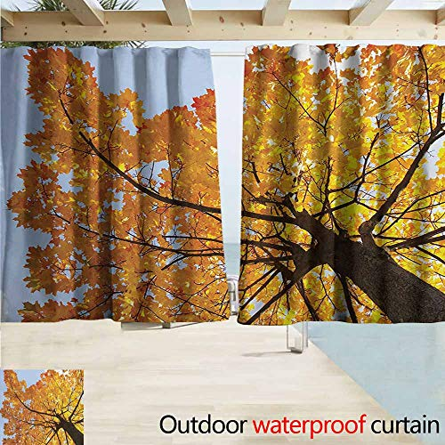 Wlkecgi Leaves Outdoor Door Curtain Autumn Maple Tree from Bottom to Top View Environment Flora Season November Print for Patio/Front Porch W55 xL45 Orange - Maple Canopy Bedroom Bed