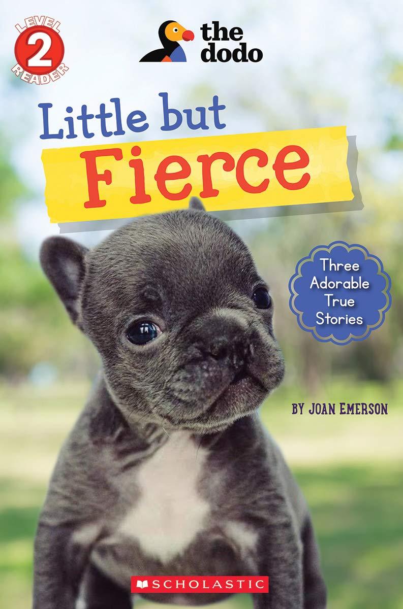 Amazon.com: Little But Fierce (The Dodo: Scholastic Reader, Level 2) (1) (9781338576191): Emerson, Joan: Books
