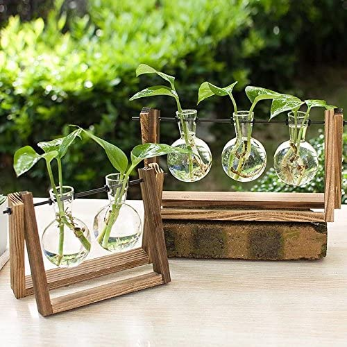 Ivolador Desktop Glass Planter Bulb Vase with Retro Solid Wooden Stand and Metal Swivel Holder for Hydroponics Plants Home Garden Wedding Decor (3 Bulb Vase) 61EqmYQFtLL