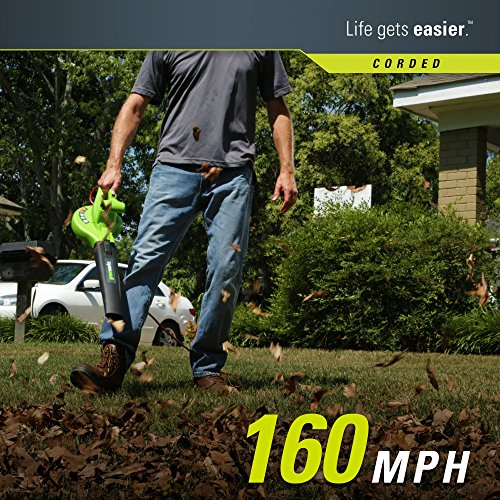 Greenworks 24012 Single Speed Electric Blower
