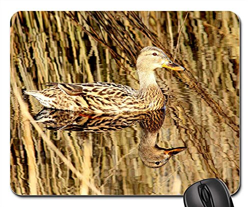 Mouse Pads - Duck Nature Mirror (Duck Mirror)