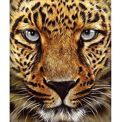 MXJSUA 5D DIY Diamond Painting Kit by Number Full Drill Round Beads Crystal Rhinestone Embroidery Cross Stitch Picture Supplies Arts Craft Wall Sticker Decor-Cheetah 12x14in