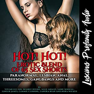Hot! Hot! Erotic Blend of 65 Sex Shorts Audiobook