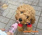 Choco Nose H258 Modern Pet Portable Water