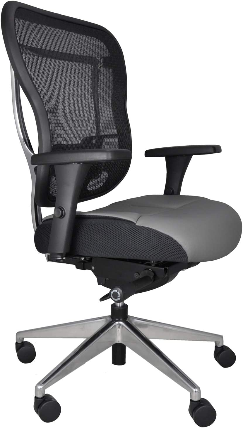 Oak Hollow Furniture Aloria Series Office Chair Ergonomic Executive Computer Chair with Genuine Leather Seat Cushion and Mesh Back, Adjustable and Comfortable, Lumbar Support, Swivel and Tilt (Gray)