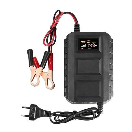 Laurelmartina Cargador de batería Inteligente del Plomo 20A de la exhibición de Digitaces del Cargador de batería Inteligente LED 12V para la ...