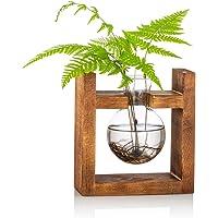 Propagation Station 1 St Lamp Vaas Glas Acorn Vaas voor Bloemen Terrarium Jar Planter met Houten Rack Stand Houders voor…