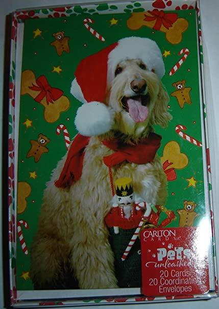Amazon.com Carlton Cards Pets Unleashed Christmas Cards