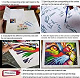ifymei Paint by Numbers for Kids & Adults