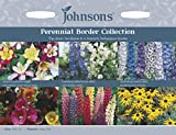 Johnsons UK/JO/FC Perennial Border Collection