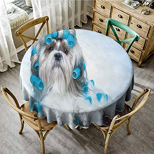 DONEECKL Polyester Tablecloth Dog Lover Decor Shih tzu Dog with Surlers Grooming Hairstyle Salon Front View Closeup Studio Shot Party D71 -