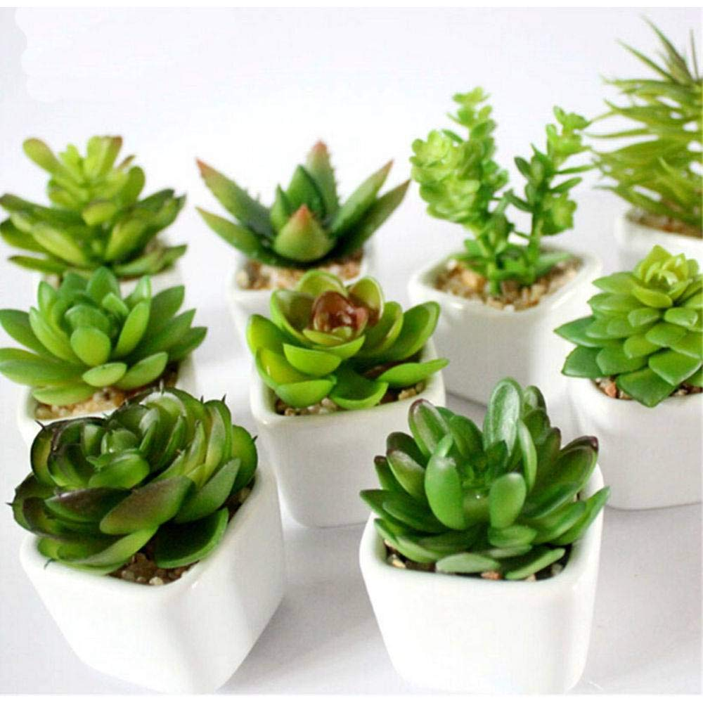 Kit 3 Plantas Mini Suculentas Artificiais Vaso Ceramica