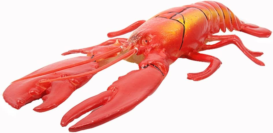 Transcend11 Fake Cooked Lobster Faux Simulation Lifelike Fish Food Home House Party Kitchen Cabinet Desk Decoration Hotel Store Display Model Photography Props Kids Play Food Toy(L Size)