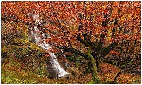 España Parques cascadas Otoño árboles ramas Uguna cascada parque ...